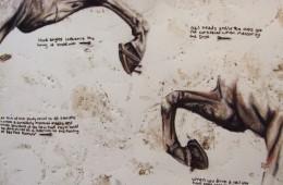 Horseshoes, 2010