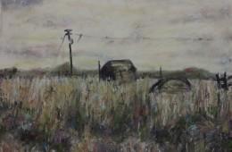 Indian Head Pairie Grass, 2011